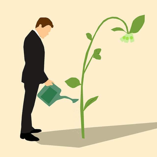 育てる投資家