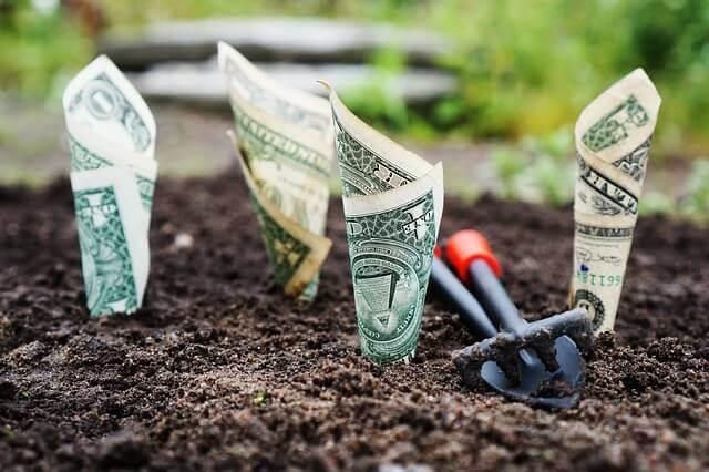 成長するお金